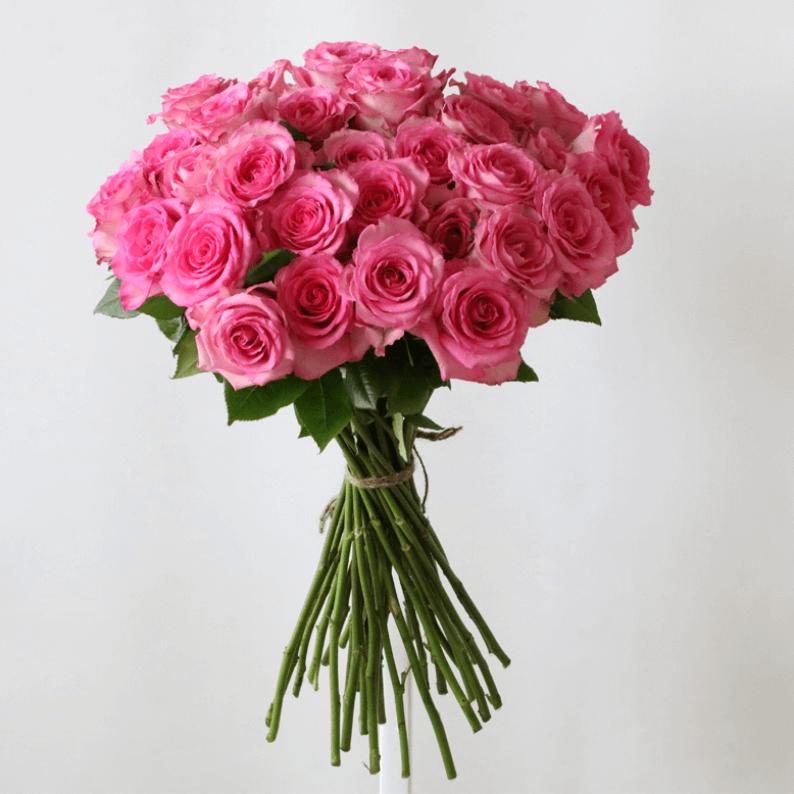 35v pink roses
