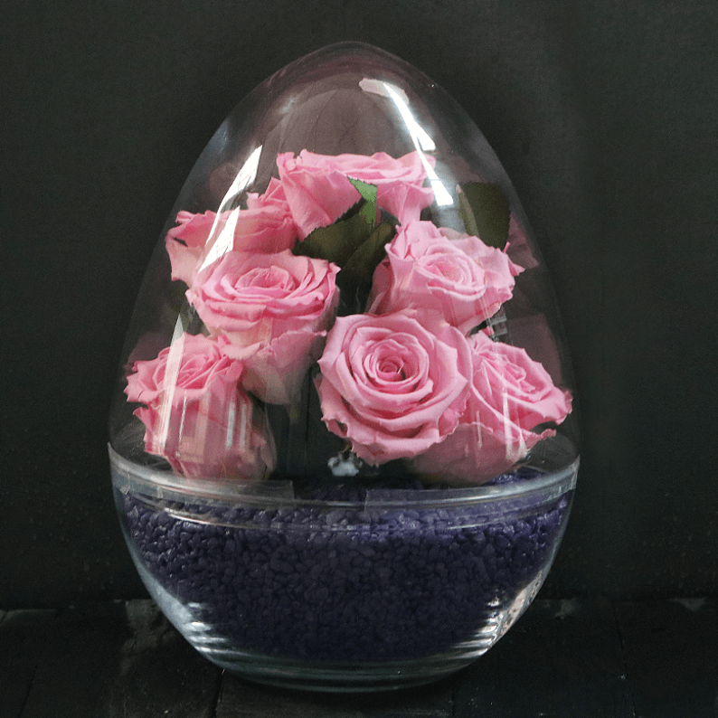 baby pink rose amor long lasting roses with purple stones