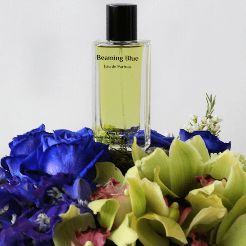 close up of beaming blue perfume with cymbidium orchids