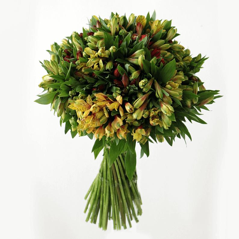 mixed bouquet of alstroemeria