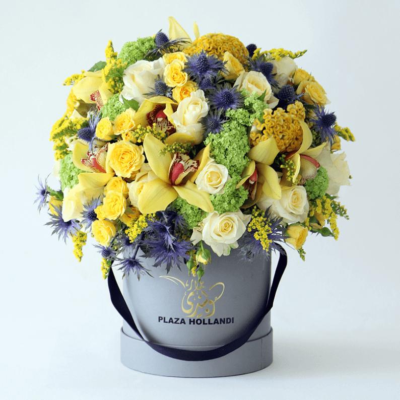bright yellow flowers in a plaza hollandi hat box