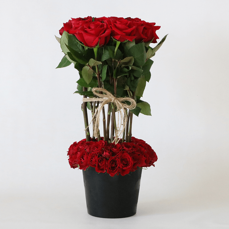 red roses surrounded by spray red roses in a black ceramic pot with a rope tie