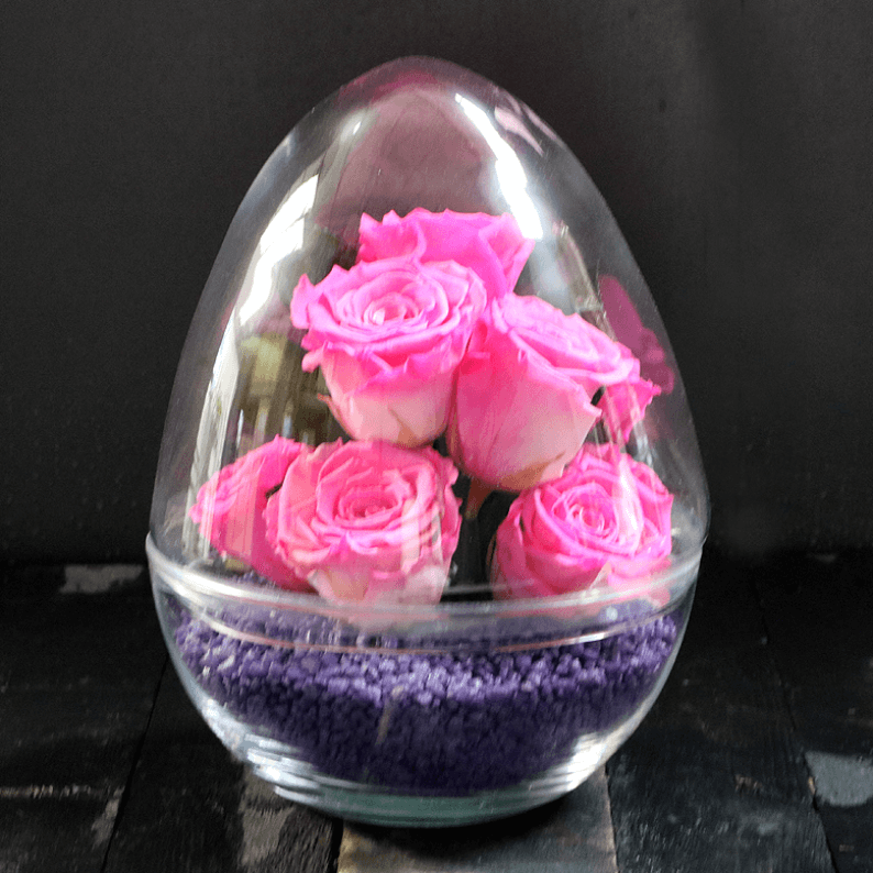 Hot pink rose amor roses with purple stones