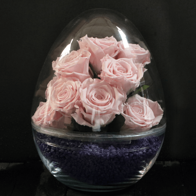 Rose amor roses with purple stones