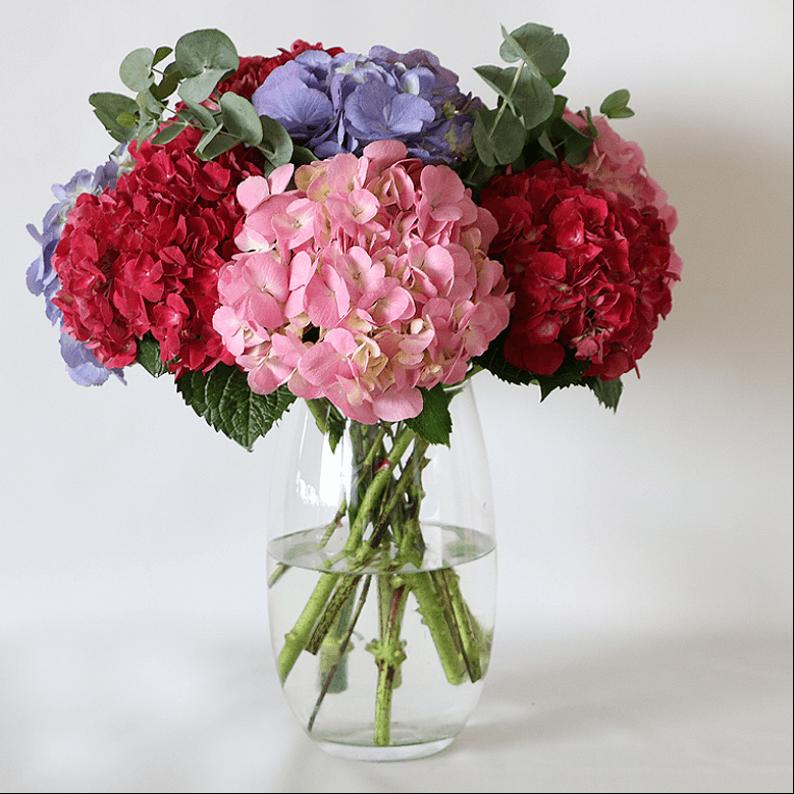Pink, dark pink and purple hydrangea bouquet in a vase