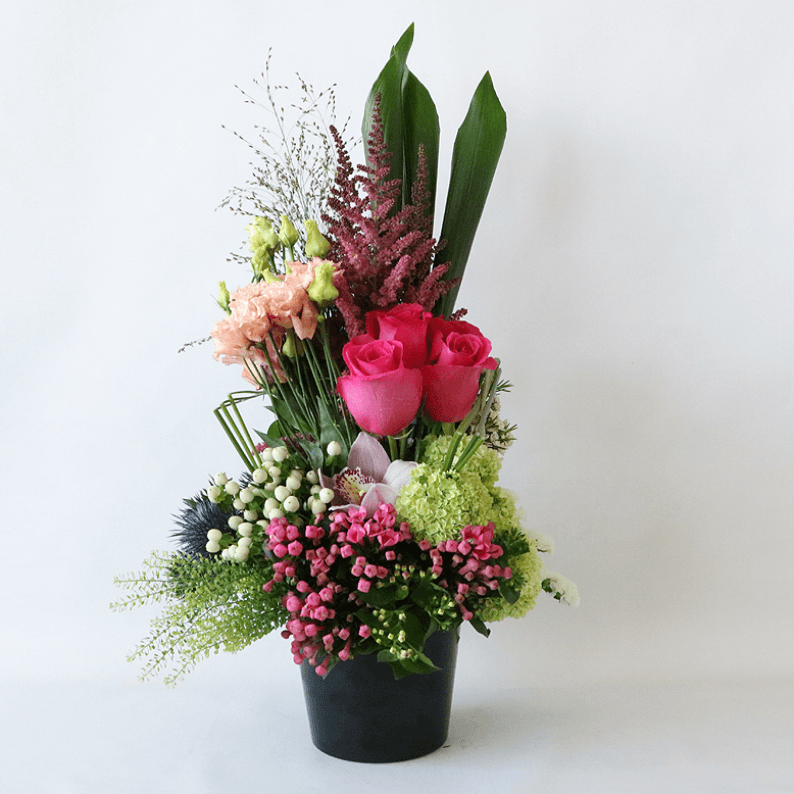 Flowers arranged in a black pot