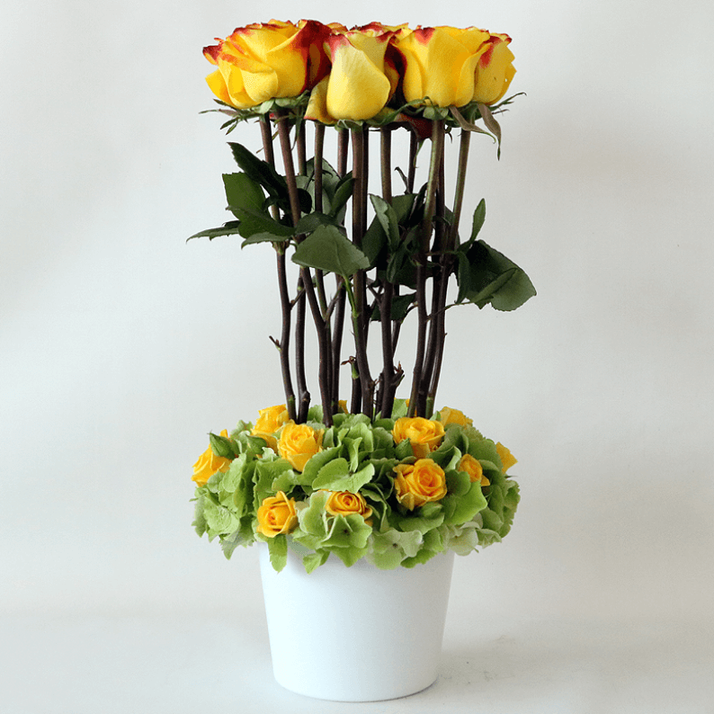 Yellow roses, green hydrangea and spray rose in a white pot