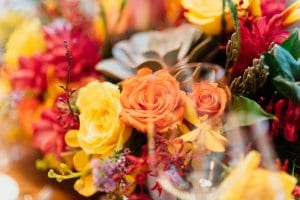Mixed red, orange and yellow flowers