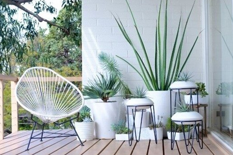 Minimalist Green Balcony