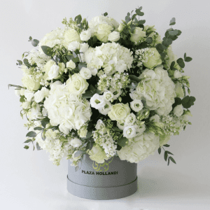 white hydrangea, white roses, white wax flower and eucalyptus in a round design in a plaza hollandi hat box