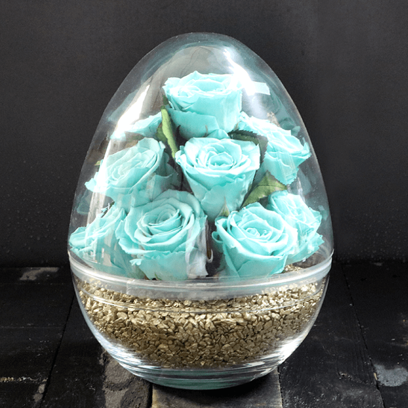 Turquoise Rose Amor Roses