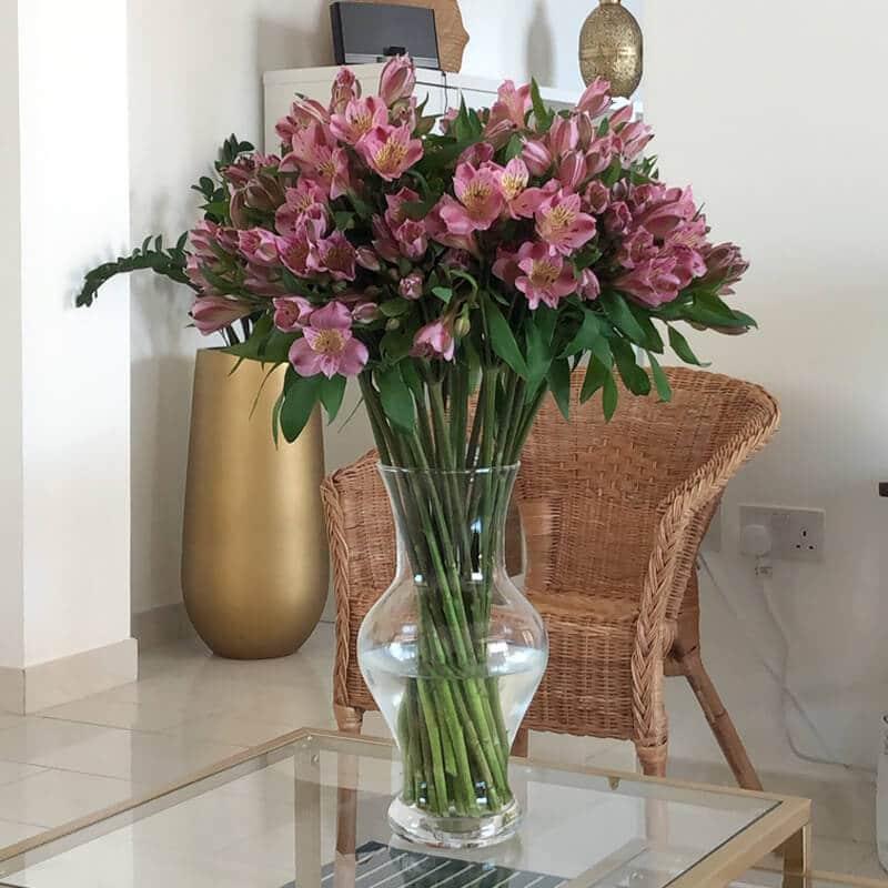 alstroemeria in a vase