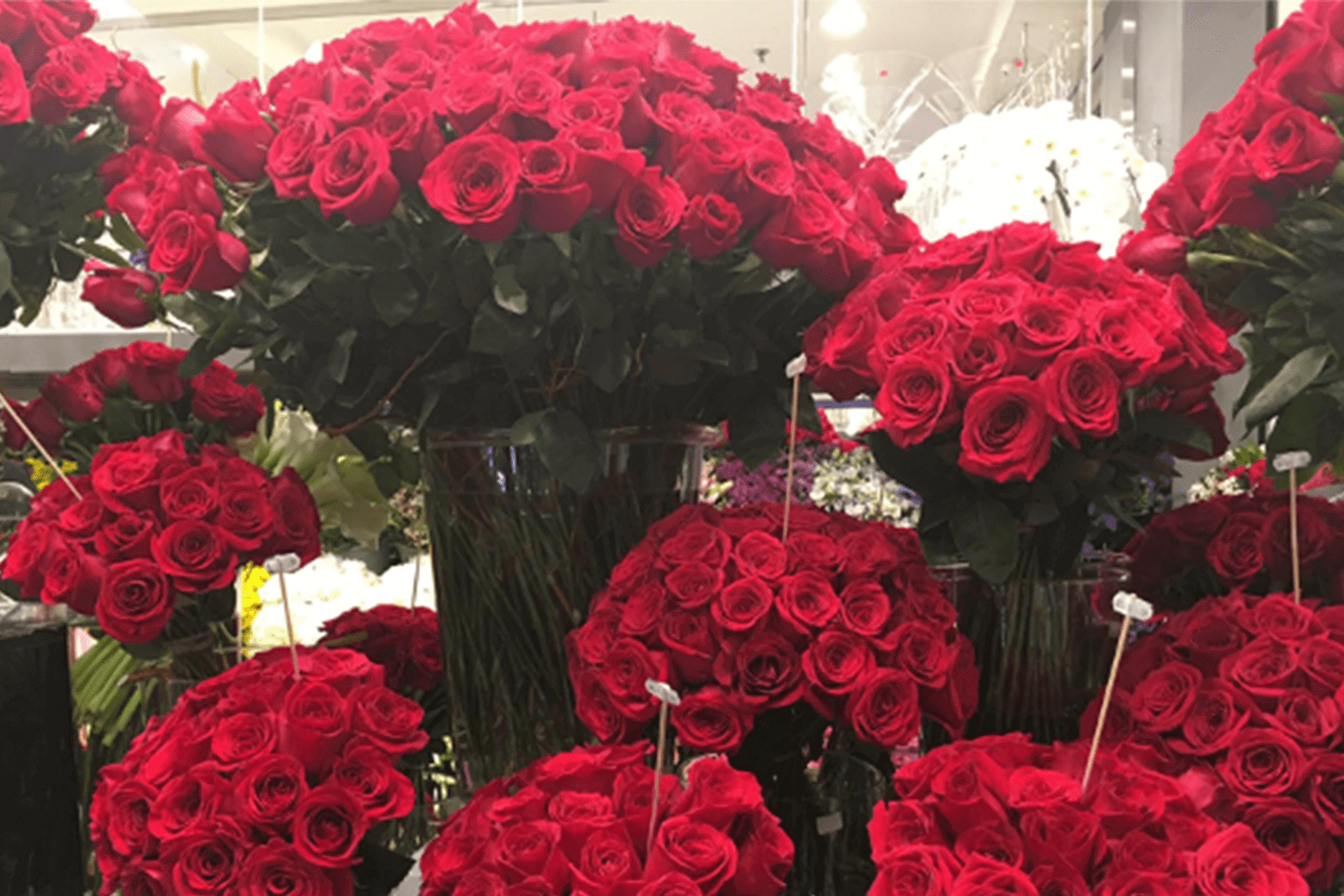 Bouquets of red roses for valentines day