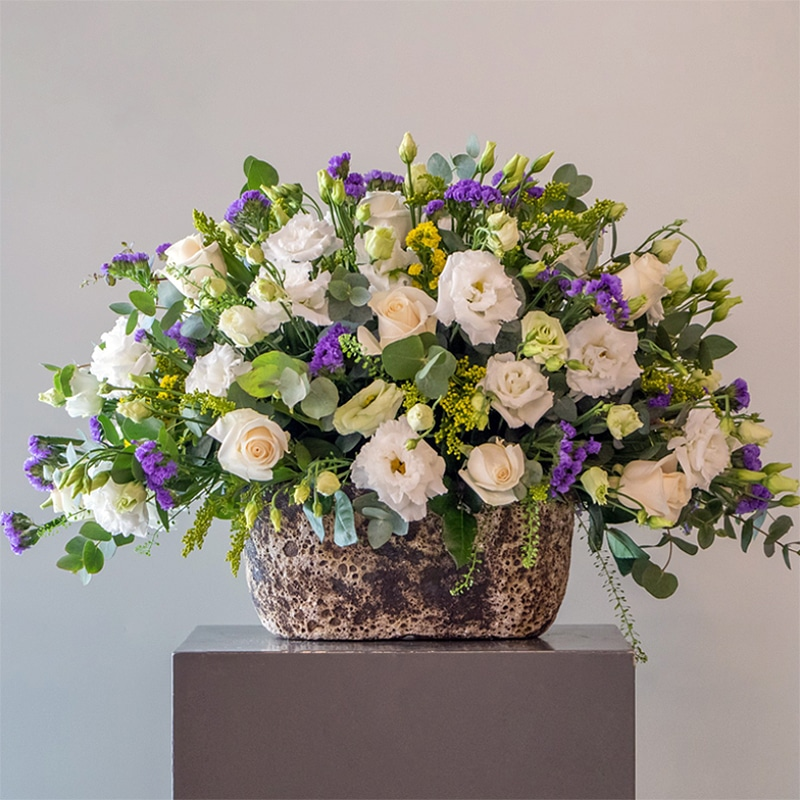 purple and white flowers in a pot