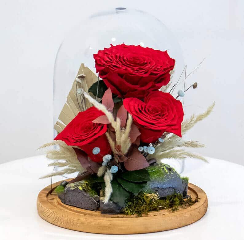 rose amor long lasting rose design