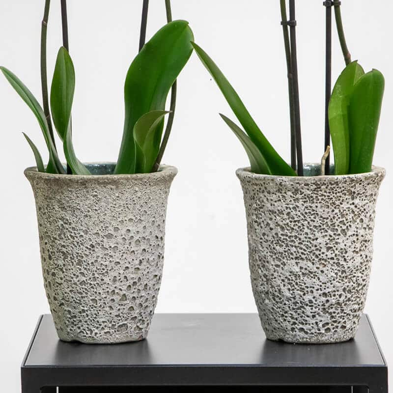 Close up of white pots