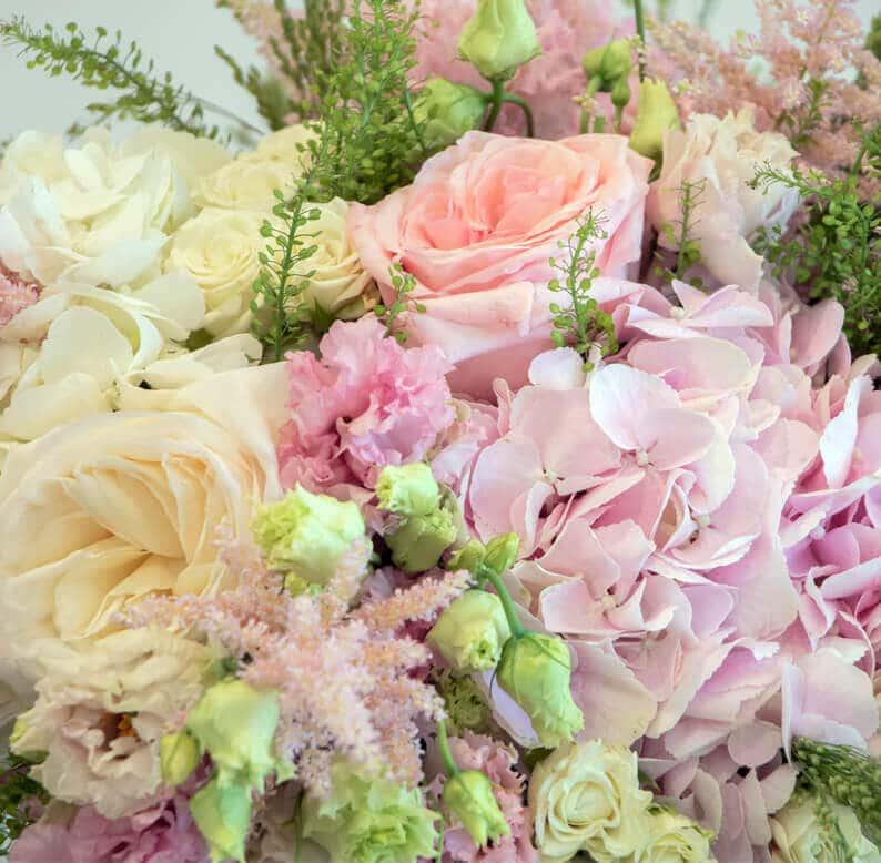 Close up of pink and white flowers