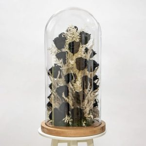 Black preserved rose and pampas grass