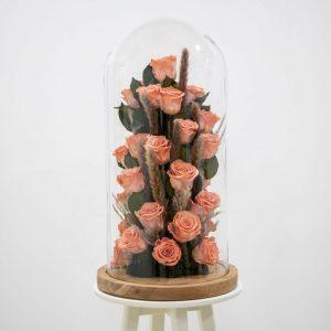 Coral preserved rose design