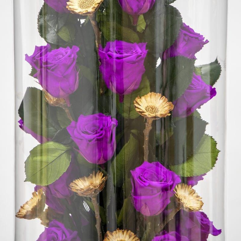 Purple preserved rose close up