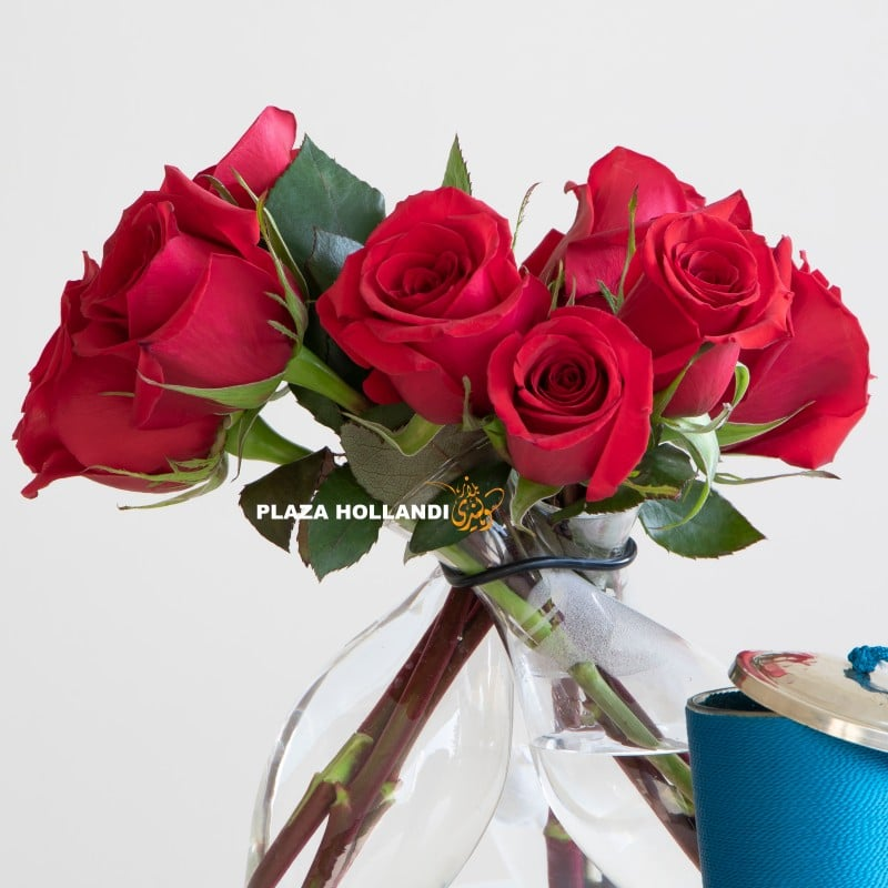 Close up of red roses in a vase