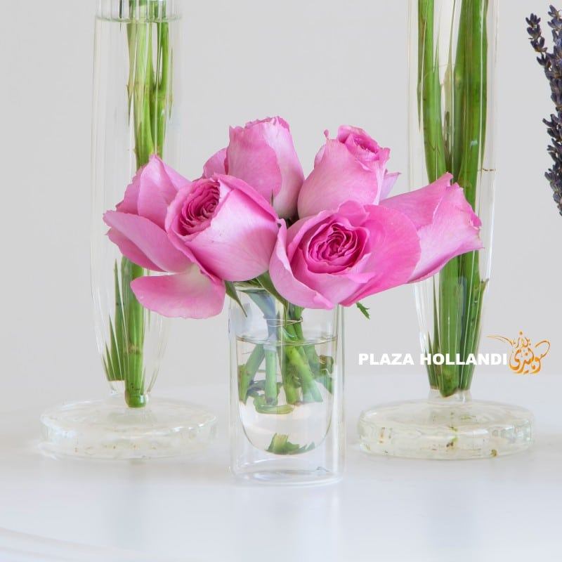 Close up of pink roses in a vase