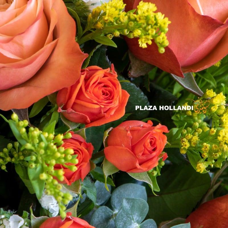 close up of spray roses