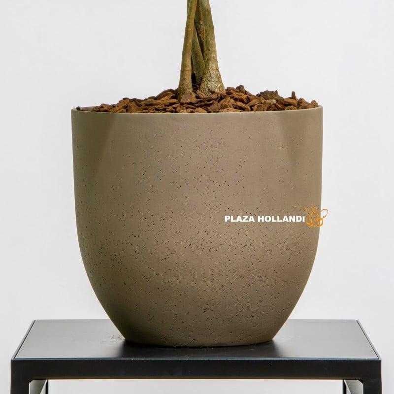 Close up of brown pot