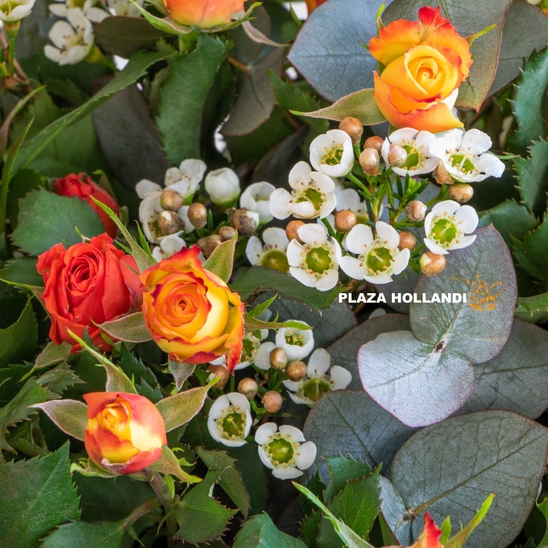 Close up of wax flower and orange spray roses