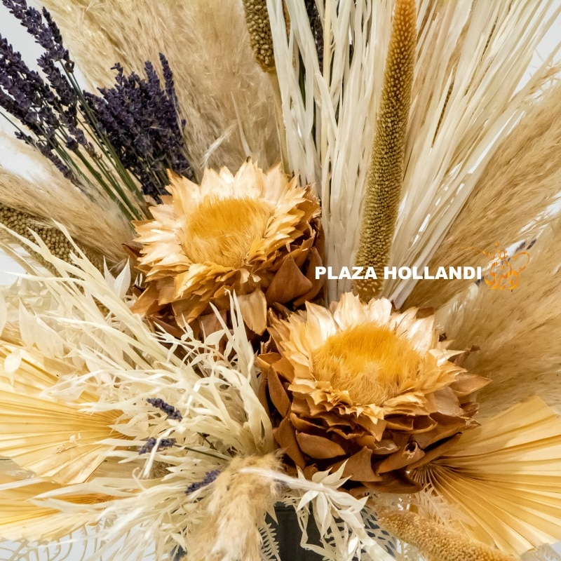 Close up of dried flowers