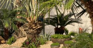 Plaza Hollandi About Landscaping